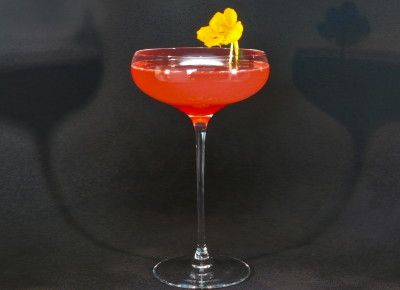 Rhubarb Fizz
