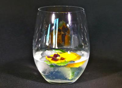 Gin (Vodka) & Tonic
