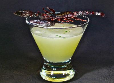 Scorpion Stinger